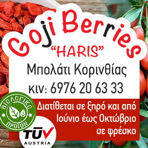 Banner Coji Berries Haris